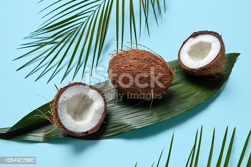 Composition of whole and half coconut on a green leaf and palm leaves on a blue background. Flat lay