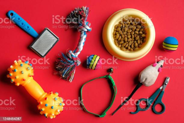 Different pet care accessories and bowl of dry food on red background picture id1248454287?b=1&k=6&m=1248454287&s=612x612&h=co96gruipjeft5azrd6me mooiwt vetyil4ojafceu=