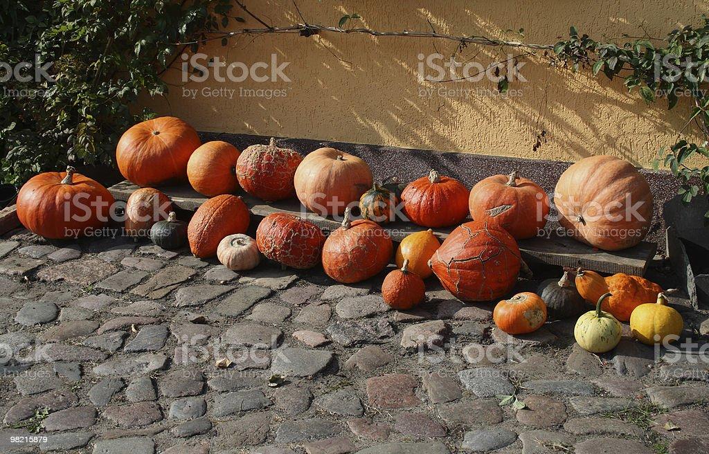 Diversi Pumpkins foto stock royalty-free