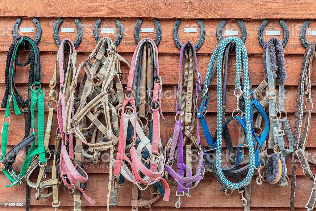 Different reins hanging near stable stock photo