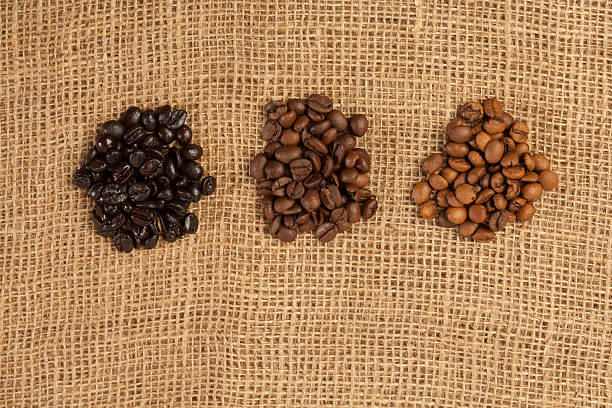 Different roasting grades of coffee beans stock photo
