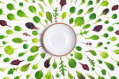 Different salad leaves and a bowl on white background