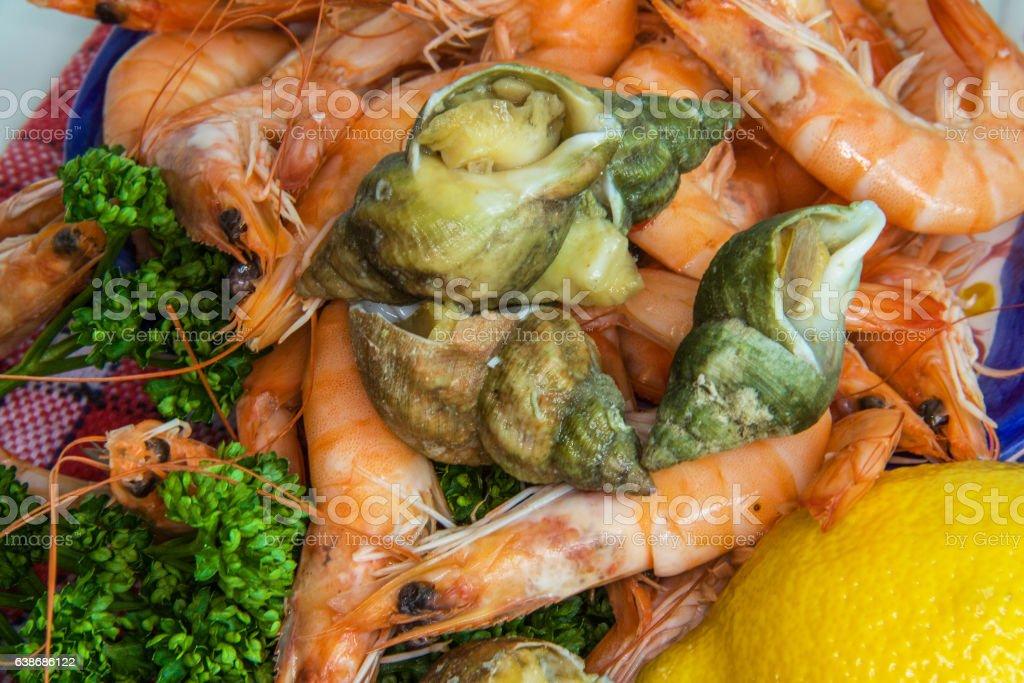 Différents fruits de mer stock photo