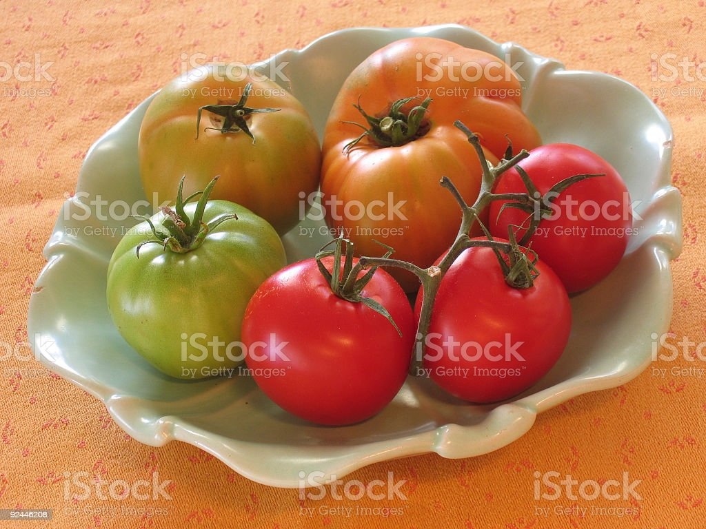 different species of tomatos stock photo