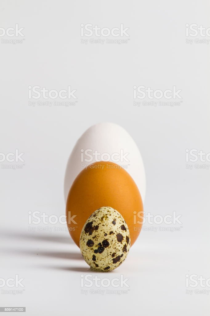different three eggs stock photo