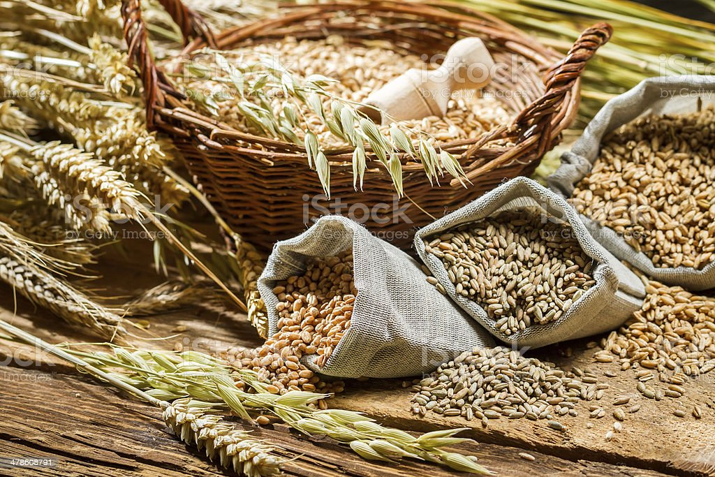 Different types of cereal grains with ears stock photo