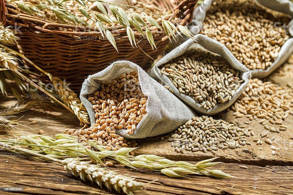 Los diferentes tipos de granos de cereales con pestañas - Foto de stock de Abundancia libre de derechos