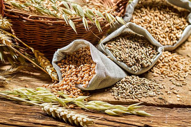 Verschiedene Arten von Getreide, Getreide und Ohren – Foto