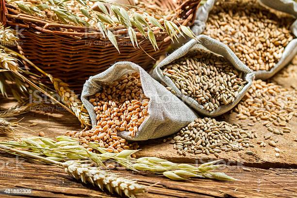 Los Diferentes Tipos De Granos De Cereales Con Pestañas Foto de stock y más banco de imágenes de Abundancia