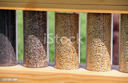Different types of grains in glass containers