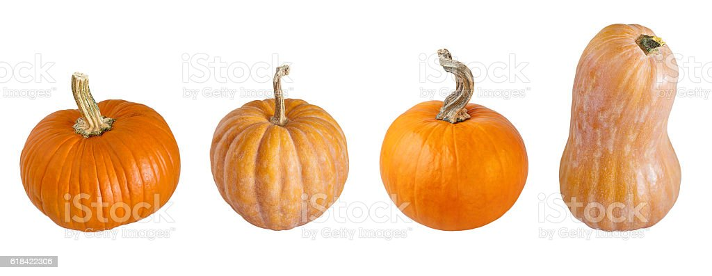 Different types of pumpkins. stock photo