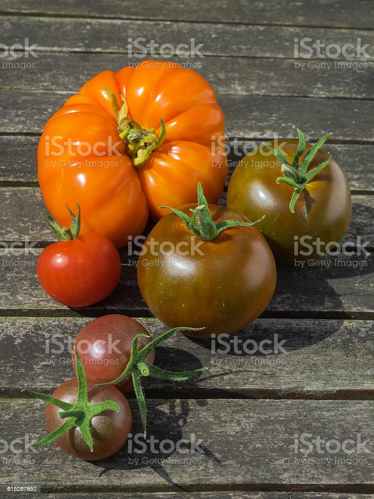 Different types of tomatoes on wooden background stock photo