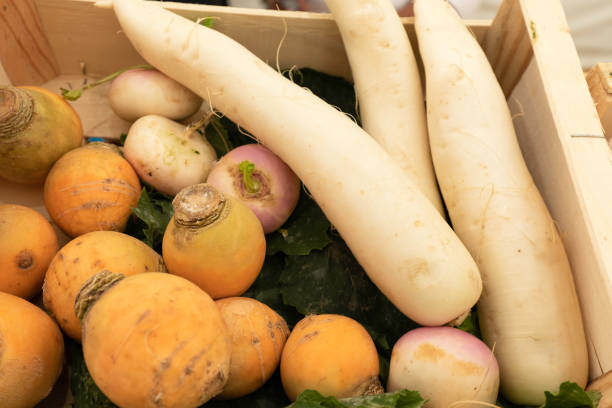 Different types of turnips on a market stall