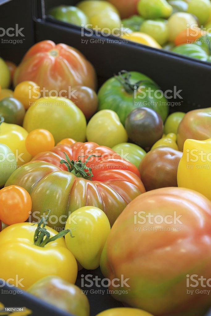 different varieties of tomatoes in a box royalty-free stock photo
