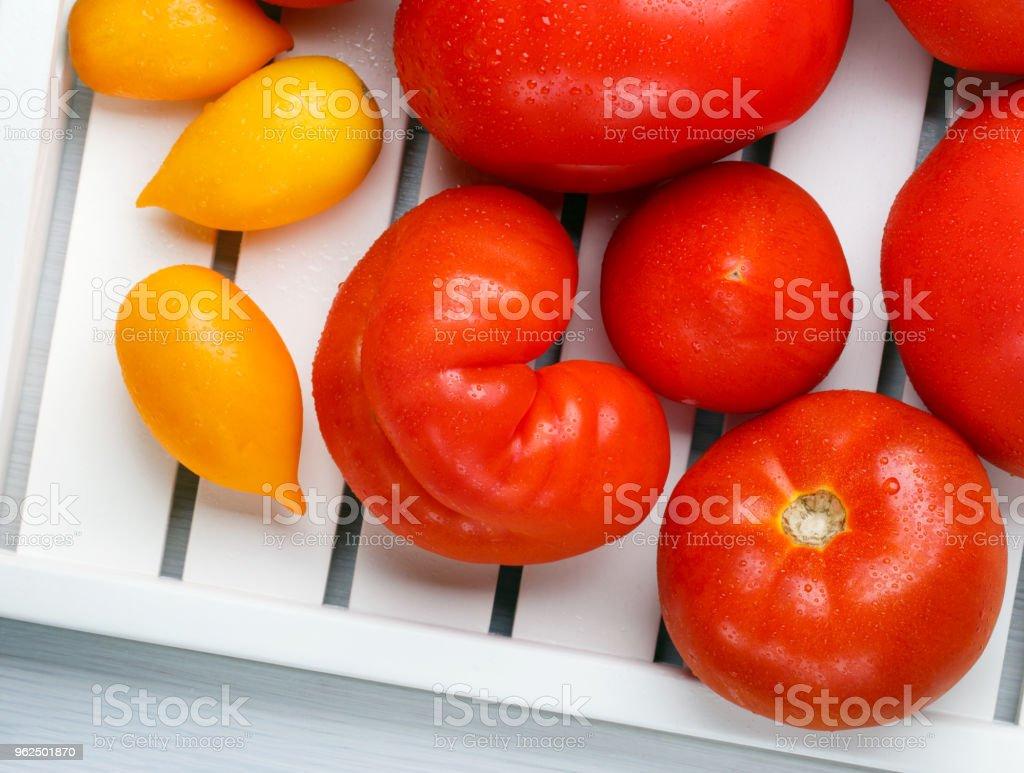 Diferentes variedades de tomates em uma bandeja branca. Colorido vermelhos e amarelos frescos tomates maduros. Vista superior. - Foto de stock de Agricultura royalty-free