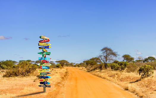 istock Different world directions signpost 1139324649