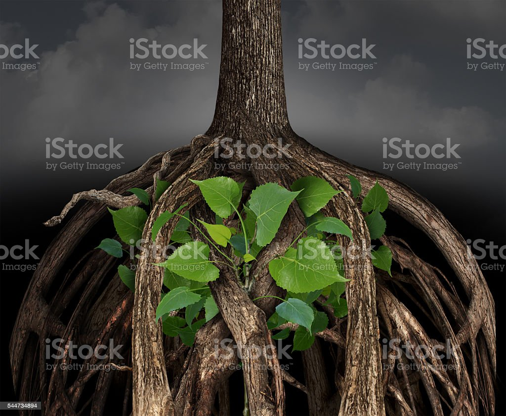 Difficult Business Growth Concept stock photo