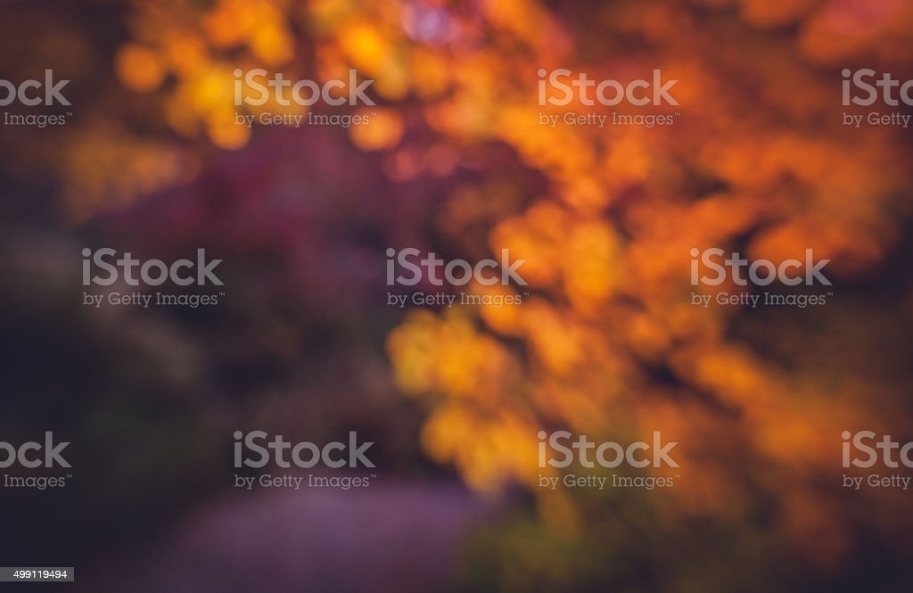 Diffused autumn colors stock photo