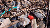 Small pieces of wood and other debris washed up to the high tide mark on a sand and pebble beach