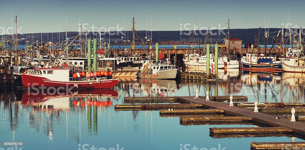 Digby Scallop Fleet stock photo