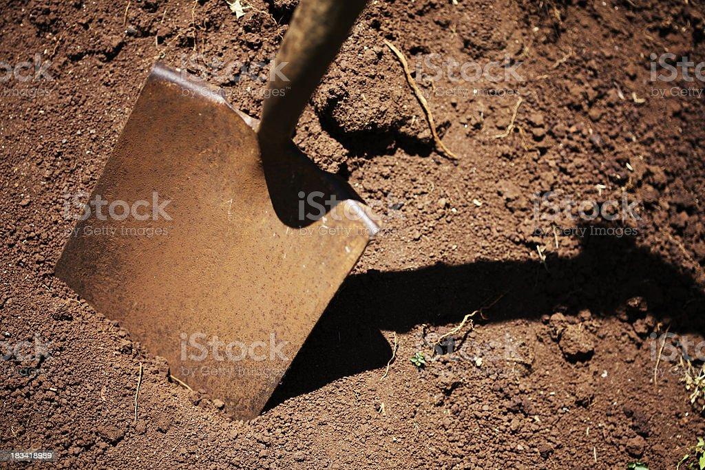 Digging Dirt royalty-free stock photo