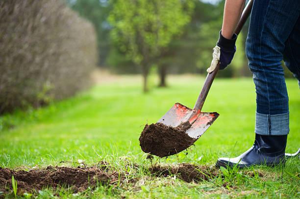 digging hole - graven stockfoto's en -beelden