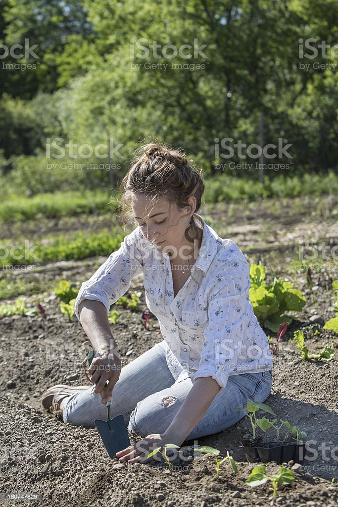 Digging in the Garden royalty-free stock photo