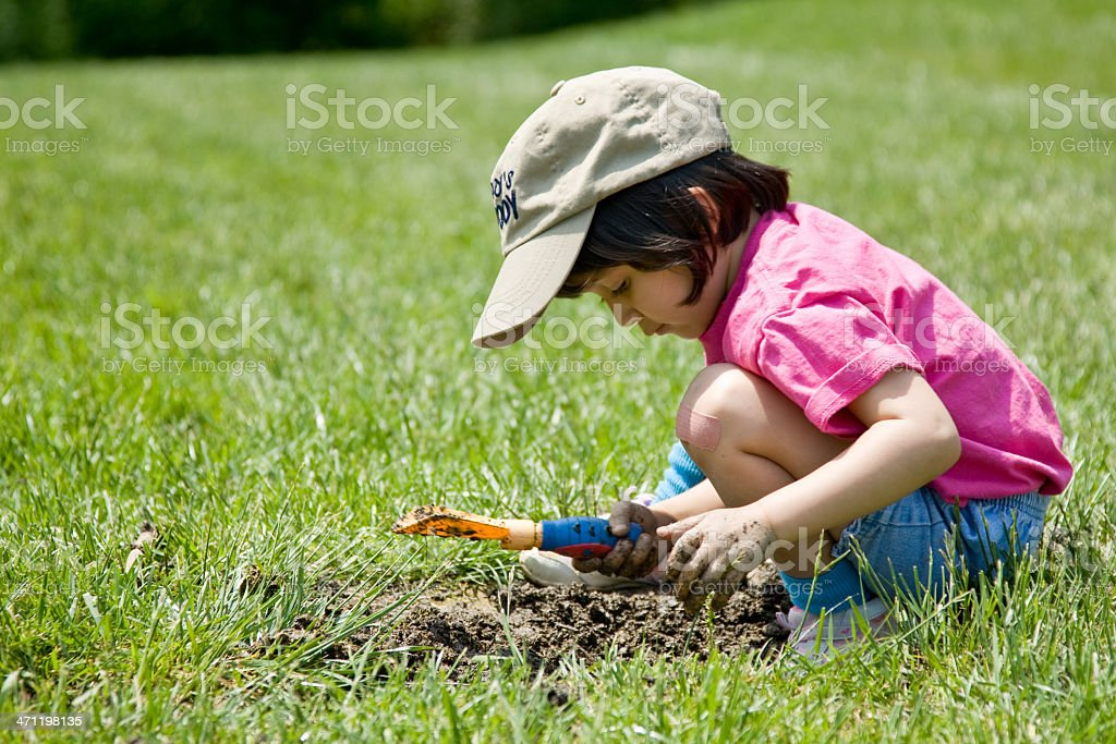 Digging in the yard stock photo
