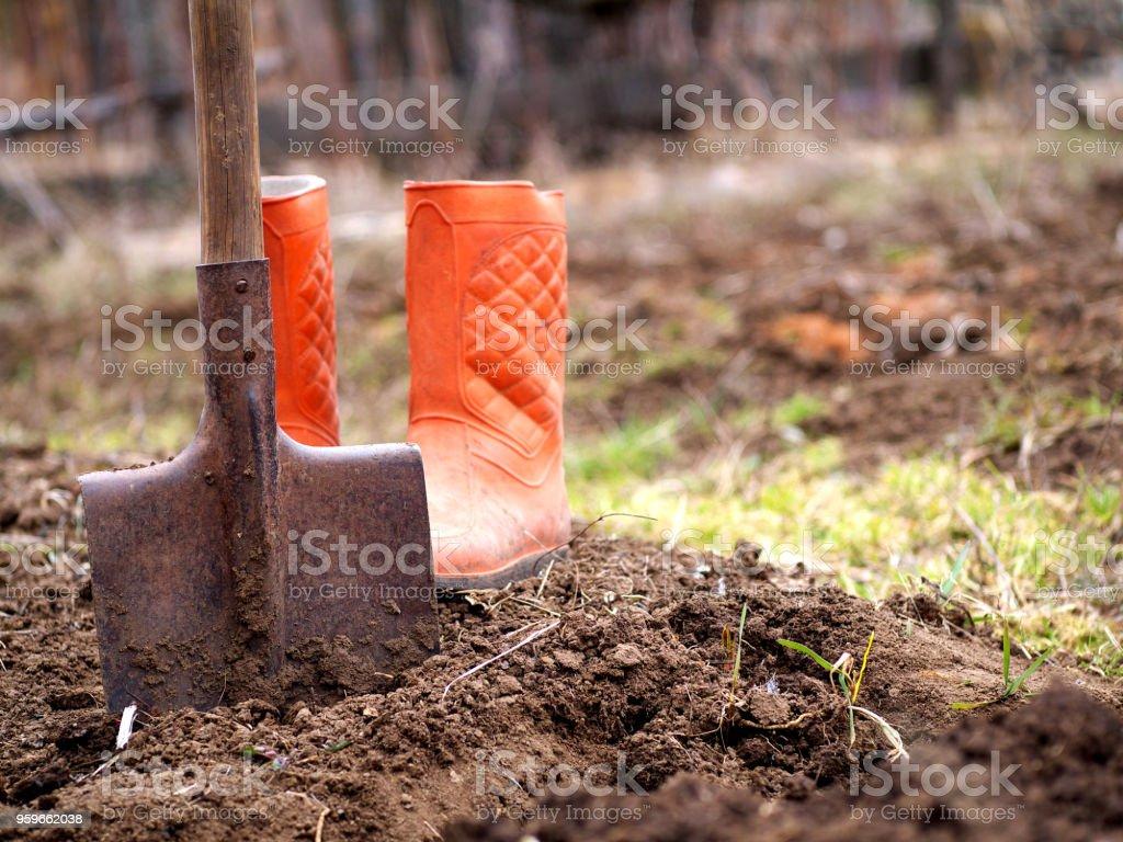 suelo de la excavación con pala en el jardín de primavera con botas de caucho naranja de fondo, profundidad de campo, espacio de copia - Foto de stock de Agricultura libre de derechos