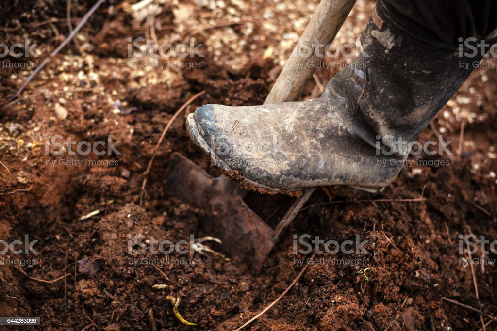 Digging The Soil stock photo