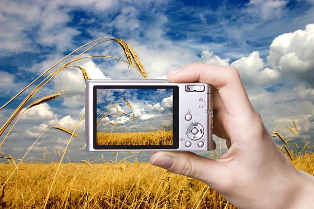 digitale kamera in der hand.  landschaft - scyther5 stock-fotos und bilder
