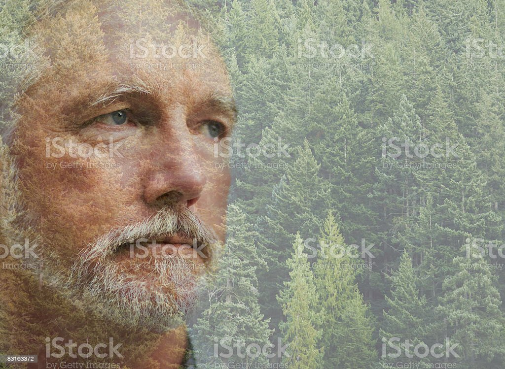 Composizione digitale di uomo maturo e foresta foto stock royalty-free