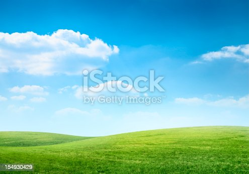 istock Digital composition of green meadow and blue sky 154930429
