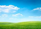 デジタル合成緑の牧草地、ブルースカイ