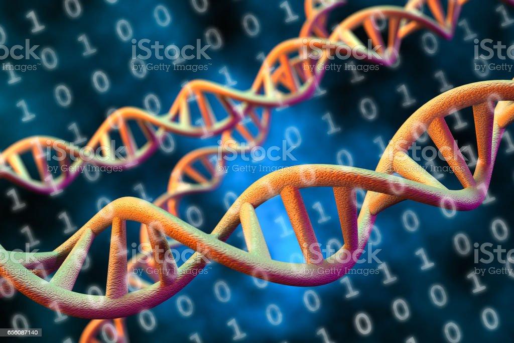 DNA Digital Data Storage Concept, 3D Rendering stock photo