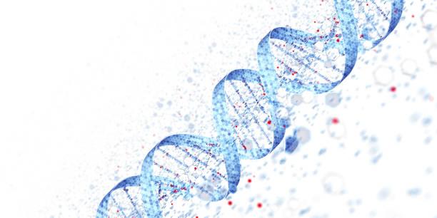 Digital DNA Concept White Background stock photo