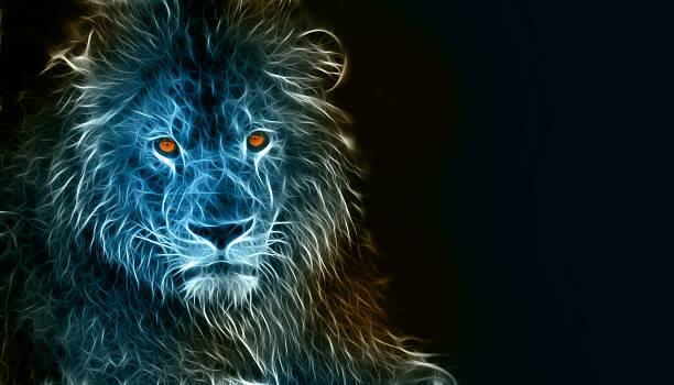 digitale zeichnung eines löwen - katze zeichnen stock-fotos und bilder