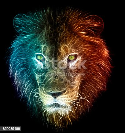 istock Digital fantasy art of a lion 852085488