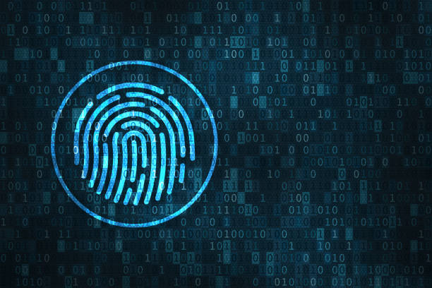 digital fingerprint security concept, binary digits background - identity stock photos and pictures
