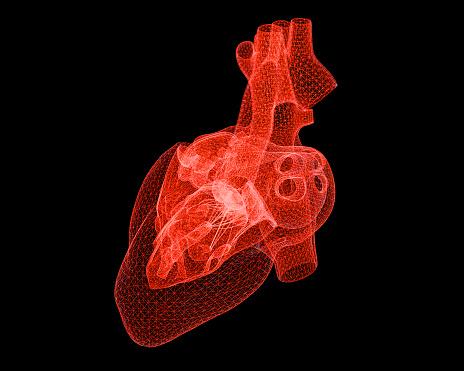 3D transparent heart image.