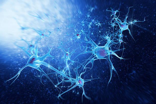 digitale illustration neurons - axon stock-fotos und bilder