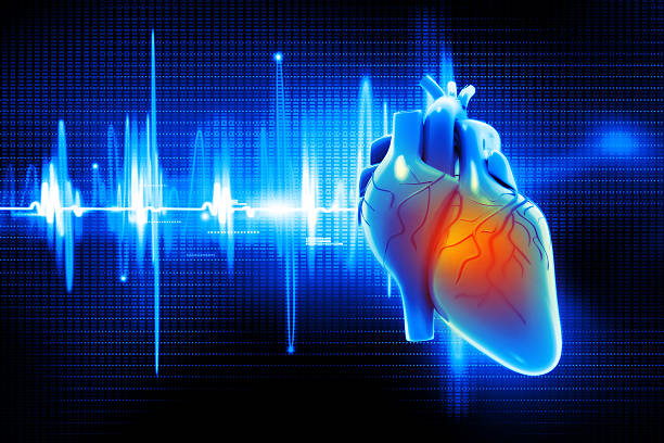 digital illustration of human heart - human heart stock photos and pictures
