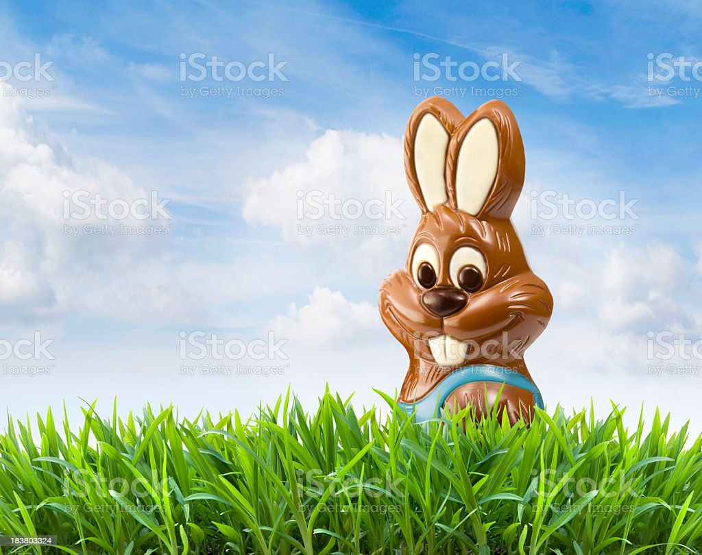 Digital image of a chocolate Easter bunny on grass under sky royalty-free stock photo