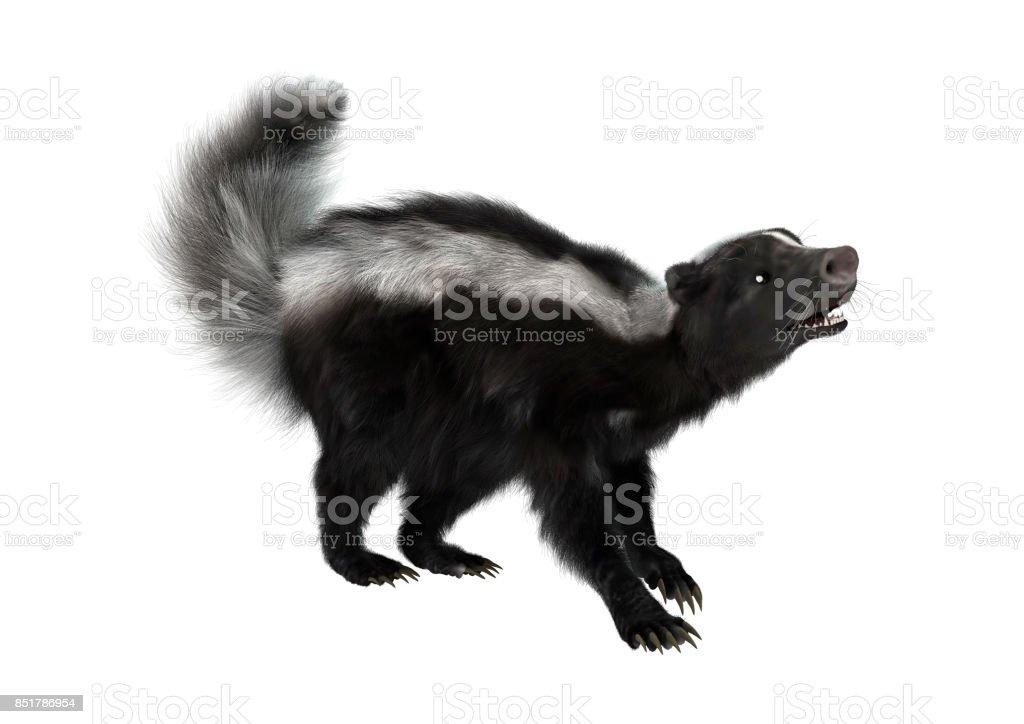 3D digital render skunk on white stock photo