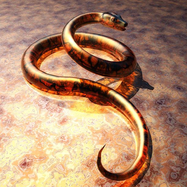 Serpent numérique visualisation - Photo