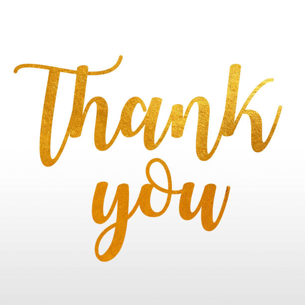 """digital erzeugte bild des angebots """"thank you"""" in einem gold kalligrafische schrift-stil auf einem weißen und grauen farbverlauf hintergrund - danke zitate stock-fotos und bilder"""