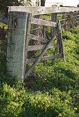 istock Dilapidated Farm Gate 146923107
