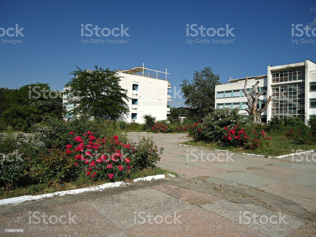 Dilapidated hardscape. Ruined path in a garden. Rose bushes on abandoned sanatorium territory on a sunny day. stock photo