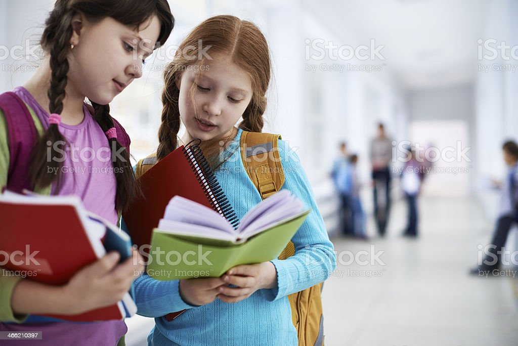 Diligent schoolgirls stock photo