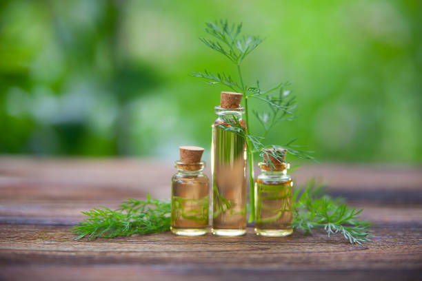 dill essential oil in  beautiful bottle on table dill essential oil in a beautiful bottle on the table dill stock pictures, royalty-free photos & images